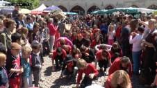flashmob2014-600x338